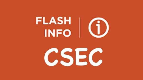 PSE 2021 : motion unanime des élus du CSE Central du 19 mars 2021